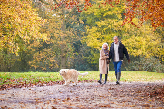 Walking May Protect Cognitive Health