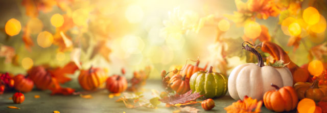 Have yourself a Brain Healthy Thanksgiving